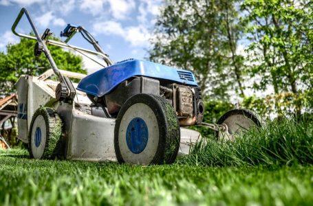 Bruikbare tips om eindeloos te genieten in jouw mooie en vooral gezellige tuin!